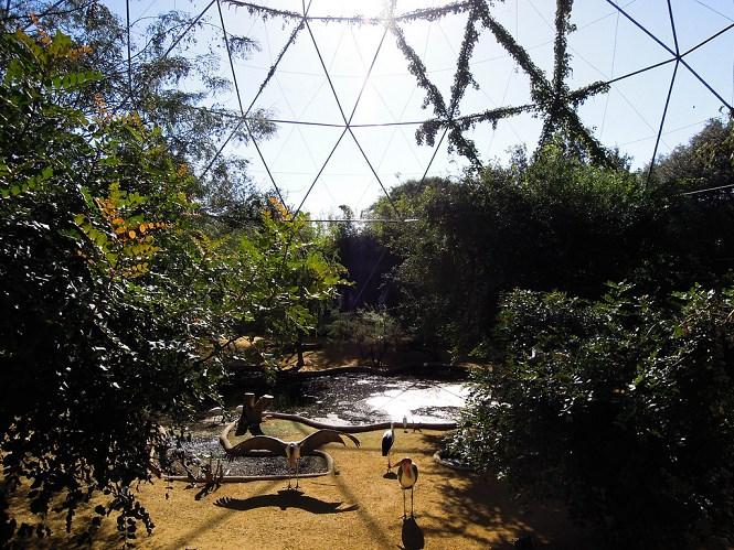 villa borghese zoo Aviary Bioparco