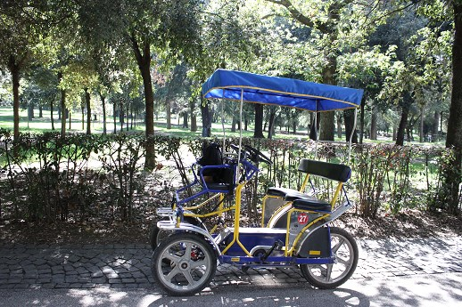 borghese gardens segway tour Electric Paddle cart